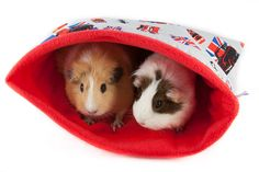 Cool Britannia Double Pocket designed for a couple of guinea pigs, hedgehogs, small rabbits, rats, ferrets etc Full range of our stylish and fun items can be found at http://www.candecosies.co.uk