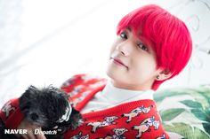 All about picture BTS # Acak # amreading # books # wattpad Bts 2018, Daegu, Bts Taehyung, K Pop, Jung Hoseok, Seokjin, Namjoon, Bts Dispatch, Bts Christmas