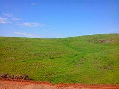 Em algum lugar da estrada Marília - Franca / SP - BRASIL