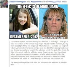 Weed: Not Even Once