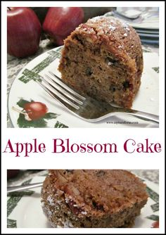 Apple Blossom Bundt Cake is a moist cake that is perfect with a cup of coffee or latte.