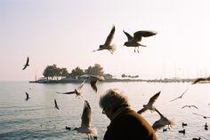 Kodak Portra 400 - Nikon F100 gabormuray.com