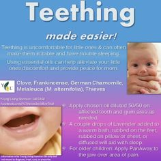 Teething relief with essential oils from Young Living! Essential Oils For Teething, Essential Oils For Babies, Yl Essential Oils, Young Living Essential Oils, Yl Oils, Doterra Oils, Teething Relief, Baby Teething, Chamomile Oil