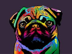 """""""Pug Dog"""" by Michael Tompsett: Art Print Canvas. The pug is a 'toy' breed of dog with a wrinkly, short-muzzled face, and curled tail. The pug breed has a fine, glossy coat that comes in a variety of colors, and a compact squ. Jasper Johns, Dog Pop Art, Posters Vintage, Dog Poster, Print Poster, Pug Love, Andy Warhol, Canvas Art Prints, Framed Prints"""