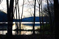 Radnor Lake, Nashville TN