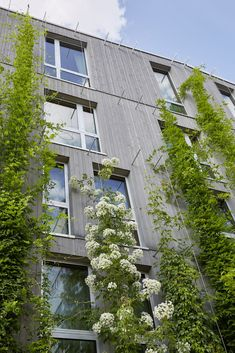 Green City Hotel Vauban Green Pearls The facade of the Green City Hotel Vauban in with its vertical growing plants. The post Green City Hotel Vauban Green Pearls appeared first on Architecture Diy. Hotel Architecture, Green Architecture, Concept Architecture, Landscape Architecture, Architecture Design, Residential Architecture, Contemporary Architecture, Sustainable City, Sustainable Architecture