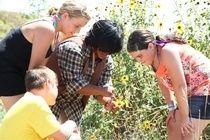 Field Trip: Irvine Ranch Outdoor Education Center