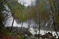 Rocky Brook Falls (.1 mi roundtrip, East Olympics) - more of a stop to check out than a hike.