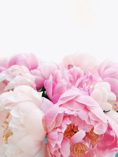 This Is Glamorous — (via Pin by Rachel Phipps on Floral Fun |...