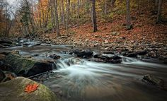 #RedHillCreek #Hamilton ON