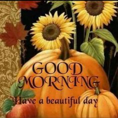 Good Morning Have a Beautiful Day pumpkin greetings good morning good morning greeting good morning quote good morning poem good morning blessings good morning friends and family good morning coffee autumn good morning fall good morning Good Morning Today, Good Morning Coffee, Good Morning Sunshine, Good Morning Picture, Good Morning Greetings, Morning Pictures, Good Morning Wishes, Morning Messages, Good Morning Images