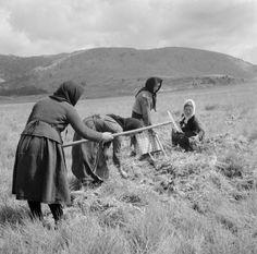sorensen Clarence Woodrow.& Harris Eygene V Ελλάδα Μέτσοβο 1950-1960 γυναίκες στα χωράφια