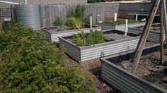 ....and he's clad them in corrugated iron/tin/colorbond look. Building this way allows you to control the height - can be whatever you like, as opposed to using sleepers