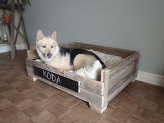 Dog bed made from pallets! @Lauren Zutt mamatrue