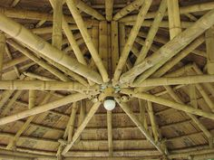 Bamboo Construction, Architecture, Wood, Crafts, Arquitetura, Manualidades, Woodwind Instrument, Timber Wood, Trees