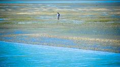 #lonesome #newzealand #travel #landscape #photography