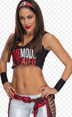 Brie Mode activated The Bella Twins, Nicki Bella, Bella Diva, Brie Bella Wwe, Nikki And Brie Bella, Wrestling Divas, Women's Wrestling, Divas Wwe, Wwe Women's Division