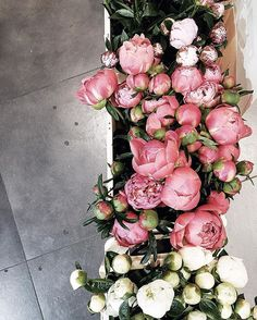 Ideas For Flowers Photography Peonies Wedding Ideas