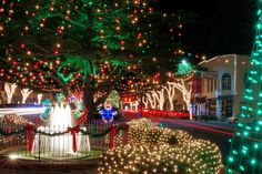 Wnc Christmas Events 2020.23 Best Winter Break Roadtrip Images