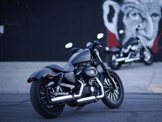 Motorcycles Wallpapers / Harley Davidson Wallpapers Download HD 1024