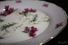 Elegantné – Flowers Photo Panna Cotta, Ethnic Recipes, Flowers, Food, Photos, Dulce De Leche, Pictures, Florals, Meals