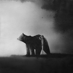 Indonesian artist Elicia Edijanto in her watercolours captures unique connection between small, vulnerable children and powerful creatures of the wild like elephants, wolves and bears. Illustrations, Children's Book Illustration, Black And White Painting, Animal Books, Bear Art, Gothic, Spirit Animal, Pet Toys, Watercolor Paintings