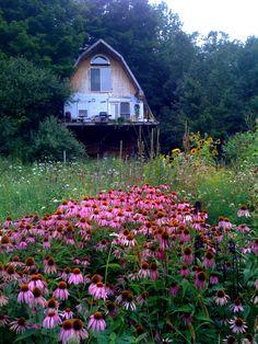 Petite maison bucolique.