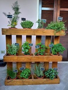Herb Garden Pallet, Diy Herb Garden, Herb Garden Design, Small Garden Design, Garden Planters, Indoor Garden, Outdoor Gardens, Garden Beds, Vertical Herb Gardens