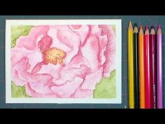 Hello friends! Tonight I have a fun watercolor pencil tutorial for you. You can use any brand you like but I am using a few of my new Albrecht Durer watercolor pencils from Faber Castell. They pref...
