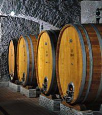 Frascati Wine Tasting Tour from Rome