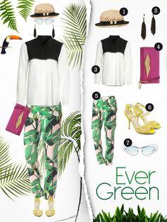 Shoporama_Evergreen