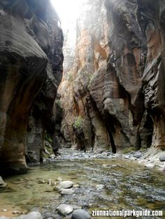 A beautiful view of the Narrows in Zion National Park