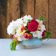 Tulipina Flowers: nectarines, garden roses