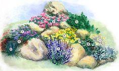 1 - Сосна горная (Pinus mugo) 'Mughus', 2 - Тимьян ползучий (Thymus serpyllum), 3 - Флокс канадский (Phlox canadensis), 4 - Очиток Эверса (Sedum ewersii), 5 - Овсяница сизая (Festuca glauca), 6 - Алиссум скальный (Alyssum saxatile), 7 - Лаванда узколистная (Lavandula angustifolia), 8 - Очиток видный (Sedum spectabile), 9 - Рута душистая (Ruta graveolens), 10 -Полынь Стеллара (Artemisia stelleriana).