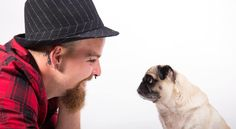 Pugs, Dog Lovers, Passion, Pug Dogs, Pug, Pug Life
