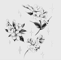 Floral Tattoo Design, Flower Tattoo Designs, Flower Tattoos, Little Tattoos, Blackwork, Sketching, Tatting, Ink, Drawings
