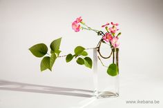 Cooling Off - Working in Glass Containers - Classes - Online Ikebana