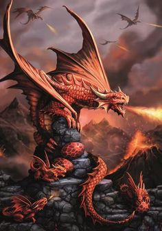(Product Code: rAN73) Fire Dragon Card, Anne Stokes Age of Dragons Cards - EnchantedJewelry