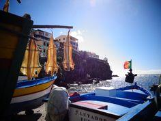 Cod fish, sunbathing in Madeira, Portugal