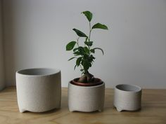 Bridget Bodenham Raku Planter - white