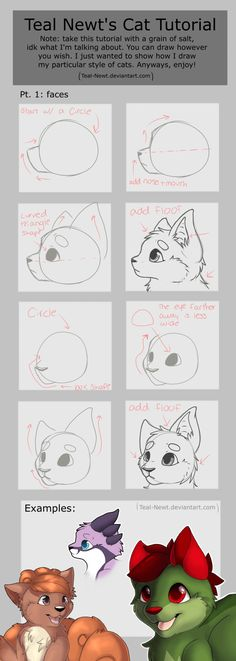 Small tutorial that someone requested (I forgot who, sorry). I'll make a part 2 about bodies later. Hopefully you guys can read it ^^ (drawn by Teal-Newt.deviantart.com)// Art credit is @Teal Newts