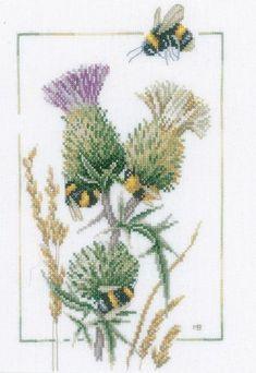 Lots of honey bees buzzin' around the deep purple flower emblem of Scotland.