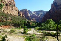 Zion stream | Airstreaming Across America | FATHOM Travel Blog and Travel Guides