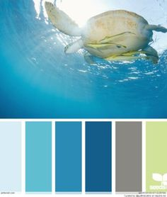 another gray green blue combo