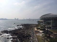 Haein Jung #han #hanjung #heain #haeinjung #junghaen #busan #정해인 #해운대구 #청사포로 #taiwangirl #해인 #丁海仁 #부산광역시 #청사포로 #경남선경아파트  I'm a graphic designer. Base in South Korea, Hongkong and Taiwan. I had various experience of branding design. Let's do together ! instagram.com/haeinjung1002 #han #hanjung #haeinjung #junghaen #busan #정해인 #해운대구 #청사포로 #taiwangirl #해인 #丁海仁 #부산광역시 #경남선경아파트  108 dong, 404 ho, 27 Cheongsapo-ro, Haeundae-gu, Busan