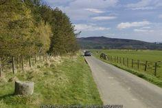 Lane to Vindolanda on line of Roman... (C) Phil Champion :: Geograph Britain and Ireland