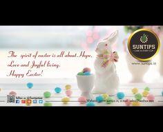 #Suntips#suntipsteas#teas#instagram##blacktea#greentea#flavored tea#orgnic#Tea cafe Suntips#