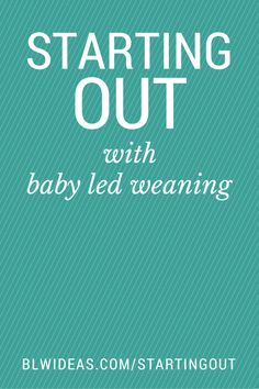 How Do I Start Baby Led Weaning? - Baby Led Weaning Ideas