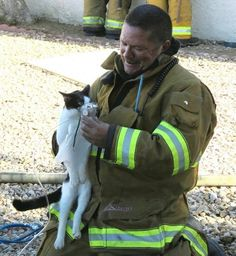 Firefighters rescue five cats from burning home