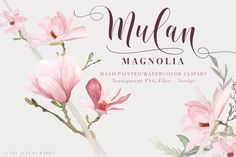 Magnolia Watercolor Flowers Clipart Files - High Res Transparent PNG - Hand…